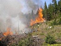 požár lesa Janov nad Nisou