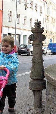 foto: Honza Rosenauer a jeho neter Leila, hydrant je v Ústí nad Labem