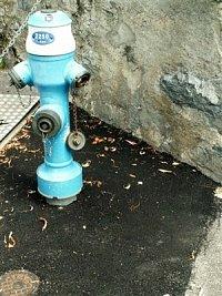 hydrant z města Montreux na břehu Ženevského jezera, foto kpt. Ing. Zdeněk Ráž, MV-GŘ HZS ČR