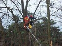 Záchranna osoby ze stromu