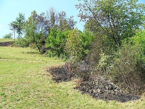 hasiči zastavili šířící se plameny před nízkým porostem a ovocným sadem