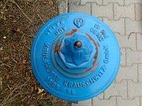 Jana Bohuslavová - hydrant Mšeno