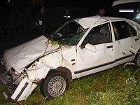 Renault narazil do stromu