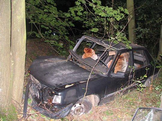 Dopravní nehoda u osady Brejl